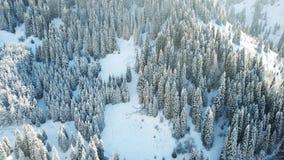 Comió cubierto totalmente con nieve Cuento de hadas de la nieve en las montañas imagenes de archivo