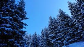 Comió cubierto totalmente con nieve Cuento de hadas de la nieve en las montañas Nubes, sol y cielo azul fotos de archivo libres de regalías