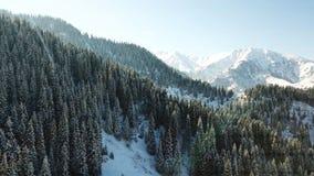 Comió cubierto totalmente con nieve Cuento de hadas de la nieve en las montañas Nubes, sol y cielo azul fotografía de archivo