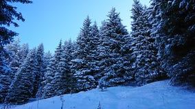 Comió cubierto totalmente con nieve Cuento de hadas de la nieve en las montañas Nubes, sol y cielo azul fotos de archivo
