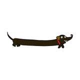 comic cartoon dachshund Royalty Free Stock Images