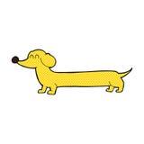 comic cartoon dachshund Stock Images