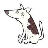 Comic cartoon dog Royalty Free Stock Images