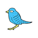 Comic cartoon garden bird Stock Images