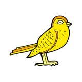 Comic cartoon garden bird Royalty Free Stock Images