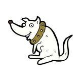 Comic cartoon happy dog in big collar Stock Images