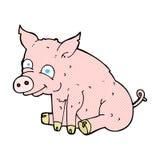 Comic cartoon happy pig Stock Photography