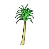 Comic cartoon palm tree Royalty Free Stock Image