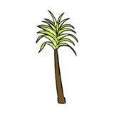 comic cartoon palm tree Royalty Free Stock Images