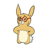 Comic cartoon rabbit wearing spectacles Royalty Free Stock Photography