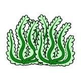Comic cartoon seaweed Stock Images