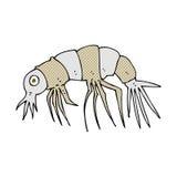 Comic cartoon shrimp Royalty Free Stock Images