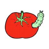 Comic cartoon tomato with bug Royalty Free Stock Photos
