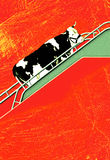 Comic Cow expoted by plane Stock Image