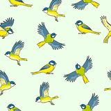 Comic style titmouse spring birds colorful seamless pattern vector illustration