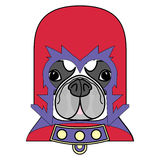 Comic Villain symbol in costume with cape, mask in red,yellow, blue and purple  as a French bulldog character Royalty Free Stock Photography