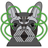 Comic Villain symbol in dark gray costume,  with metal mask green pipes as a French bulldog character Stock Photo