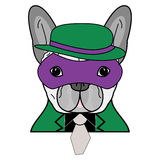 Comic Villain symbol in green suite with gray tie, purple mask and green and purple hat  as a French bulldog character Stock Photos