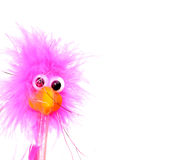 Comical Bird. Funny looking bird with copy space to the right, can be used for a background or scrapbooking or stationary Royalty Free Stock Photos