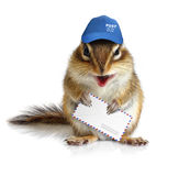 Comical chipmunk postman, on white. Comical chipmunk postman hold mail envelope Royalty Free Stock Image