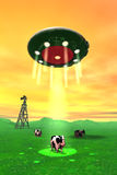 Comical Cow Abduction 4. Comical looking cows are about to be abducted by a flying saucer royalty free illustration