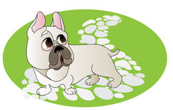 Comical Drawing Of French Bulldog Royalty Free Stock Image