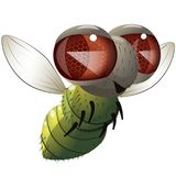 Comical fly. Illustration of cartoon character flying green fly over white background vector illustration
