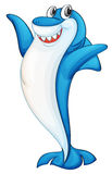 Comical shark illustration Stock Image