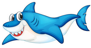 Comical shark illustration. Illustration of a blue and white shark Royalty Free Stock Photo