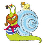 Comical snail-sailor Stock Images