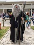 Comicon 2015 - offentlig händelse Royaltyfria Bilder