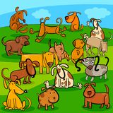 Comics dogs cartoon characters group. Cartoon Illustration of Comic Dogs and Puppies Animal Characters Group Stock Photography