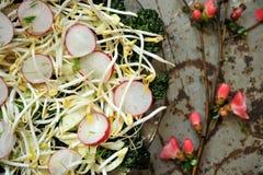 Comida alcalina, sana: brote de las sojas con la ensalada del rábano y de la col rizada fotografía de archivo libre de regalías