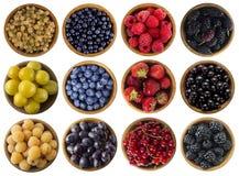 Comida amarilla, roja, azul y negra Bayas aisladas en blanco Collage de las diversas frutas y bayas de los colores en un fondo bl Foto de archivo libre de regalías