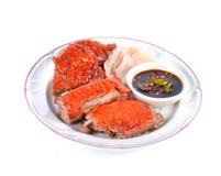 Comida asada del chino de la salsa de la pizca del pato Imagen de archivo libre de regalías