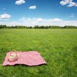 Comida campestre al aire libre Fotos de archivo libres de regalías