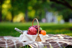 Comida campestre al aire libre en día caliente en el parque del verano Fotografía de archivo