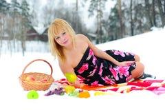 Comida campestre con la fruta en nieve Foto de archivo