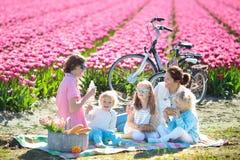 Comida campestre de la familia en el campo de flor del tulipán, Holanda Fotografía de archivo