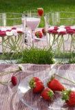 Comida campestre de las fresas Fotos de archivo libres de regalías