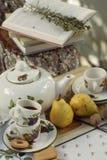 Comida campestre del jardín, juego de té y un libro Imagen de archivo libre de regalías
