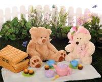 Comida campestre del oso del peluche Imagen de archivo