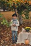 Comida campestre del otoño Foto de archivo libre de regalías