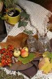 Comida campestre del otoño en un jardín Fotos de archivo libres de regalías