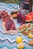Comida campestre del primer en naturaleza Bocadillos, torta, termo, bebidas y uvas foto de archivo libre de regalías