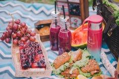 Comida campestre del primer en naturaleza Bocadillos, torta, termo, bebidas y uvas fotos de archivo