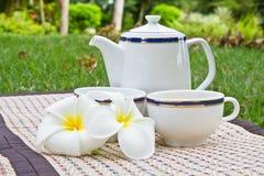 Comida campestre del té imagenes de archivo