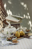 Comida campestre del té en el jardín Fotos de archivo