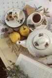 Comida campestre del té en el jardín, las frutas y las nueces Fotografía de archivo libre de regalías
