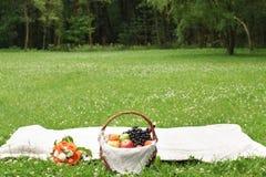 Comida campestre del verano en un claro verde con la fruta y el vino en una cesta foto de archivo libre de regalías